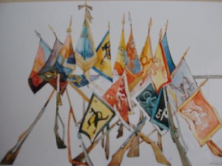 drapeaux_web.jpg
